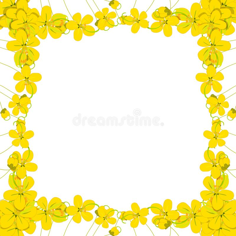 Yellow Cassia Fistula - Golden Shower Flower Border on White Background with copy space. Vector Illustration vector illustration