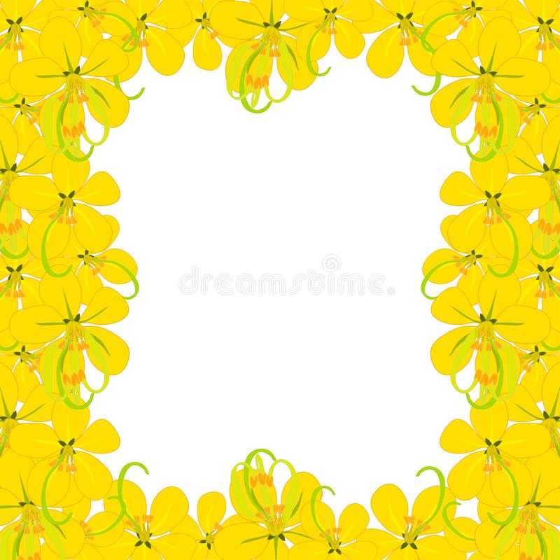 Yellow Cassia Fistula - Golden Shower Flower on White Background with copy space. Vector Illustration royalty free illustration