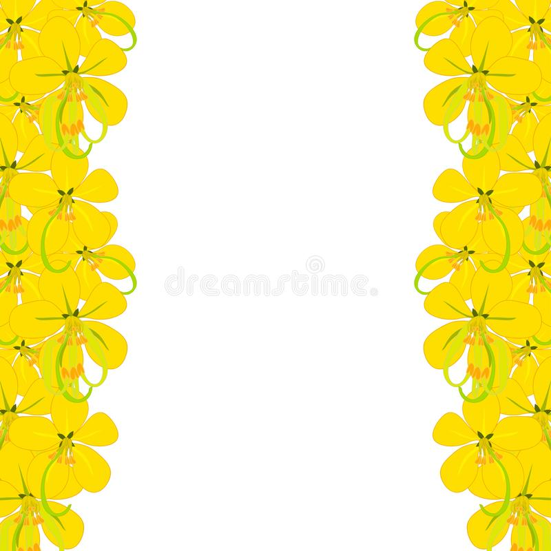 Yellow Cassia Fistula - Golden Shower Flower on White Background with copy space. Vector Illustration stock illustration
