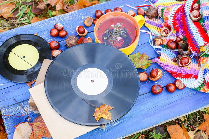 Yellow ceramic cup of herbal tea and vintage vinyl records on aged wooden background with fall autumn leaves and chestnuts. Acoustic, aesculus, autumnal royalty free stock images