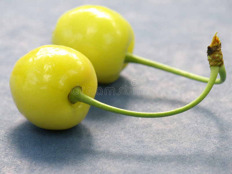 Yellow cherry stock image