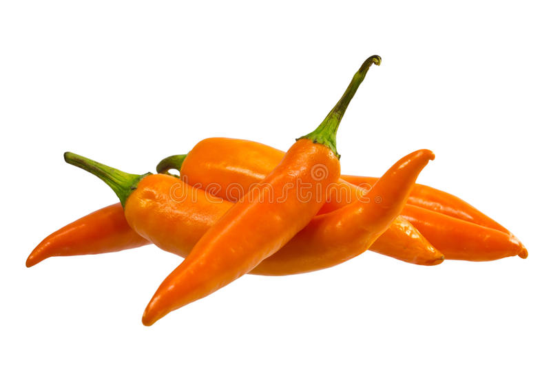 Download Yellow Chili pepper stock image. Image of studio, isolated - 30519209