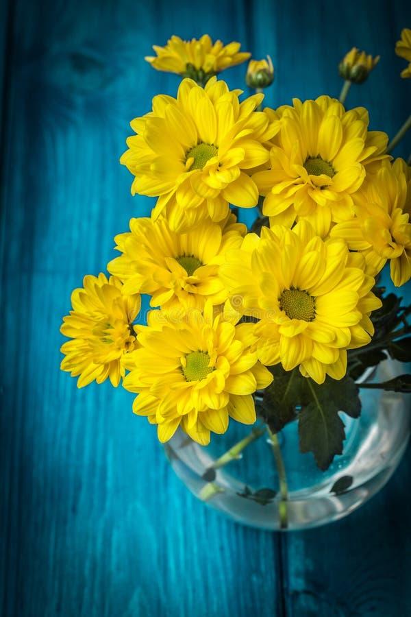 Yellow chrysanthemum flowers stock photo