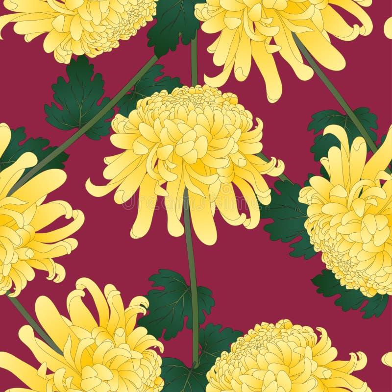 Yellow Chrysanthemum, Kiku Japanese Flower on Violet Background. Vector Illustration.  royalty free illustration