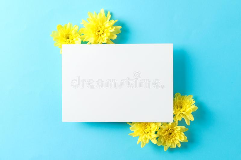 Yellow chrysanthemums and empty space on blue background stock images
