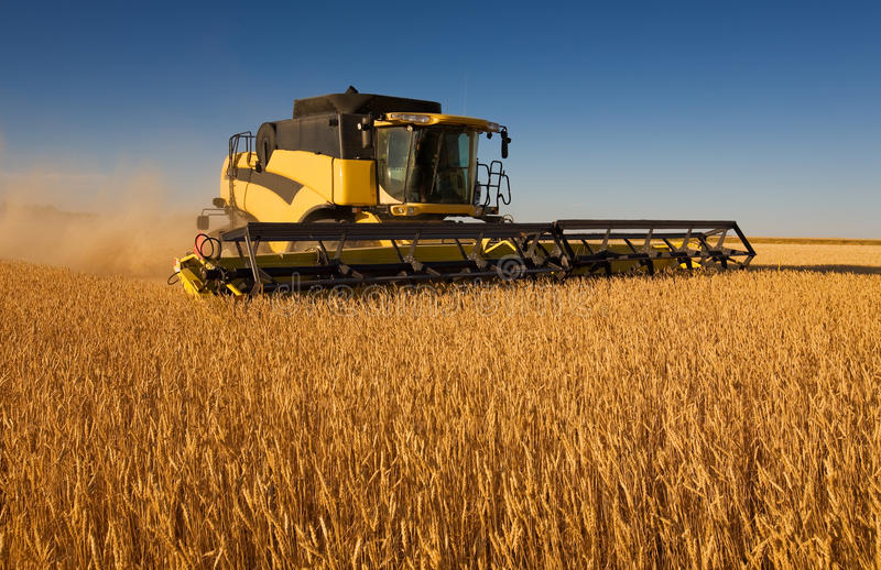 Download Yellow combine harvester stock image. Image of golden - 11035137
