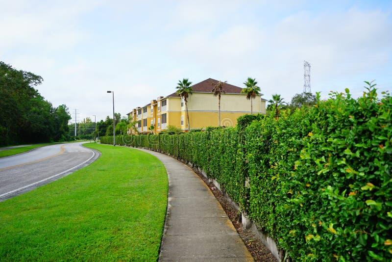 Yellow condos or apartments and green ivy wall royalty free stock photo
