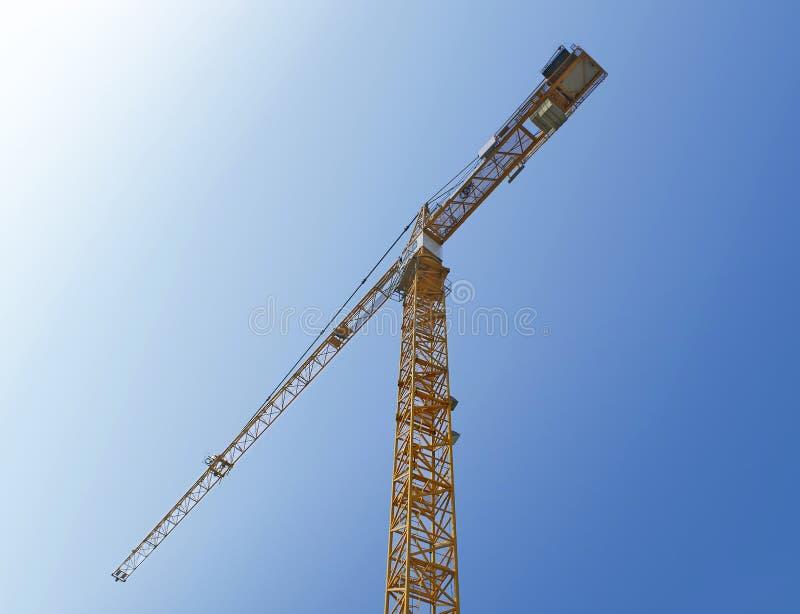 Yellow Crane Stock Image