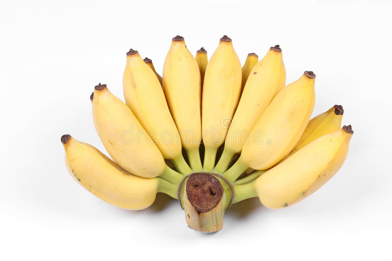 Yellow cultivated banana, Ripe cultivated banana. stock image