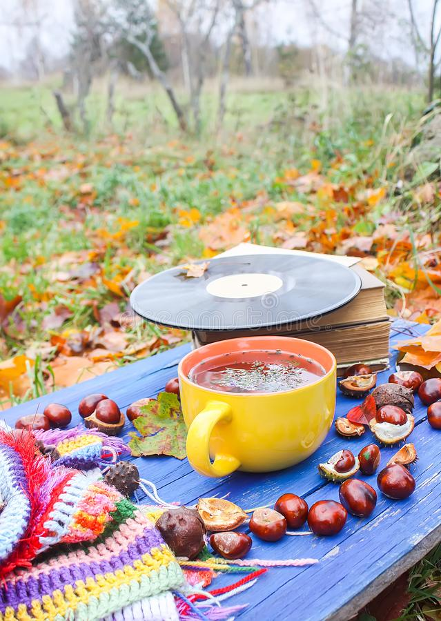 Yellow cup of herbal tea and vintage vinyl records on aged wooden background with fall autumn leaves and chestnuts. Yellow ceramic cup of herbal tea and vintage royalty free stock photography