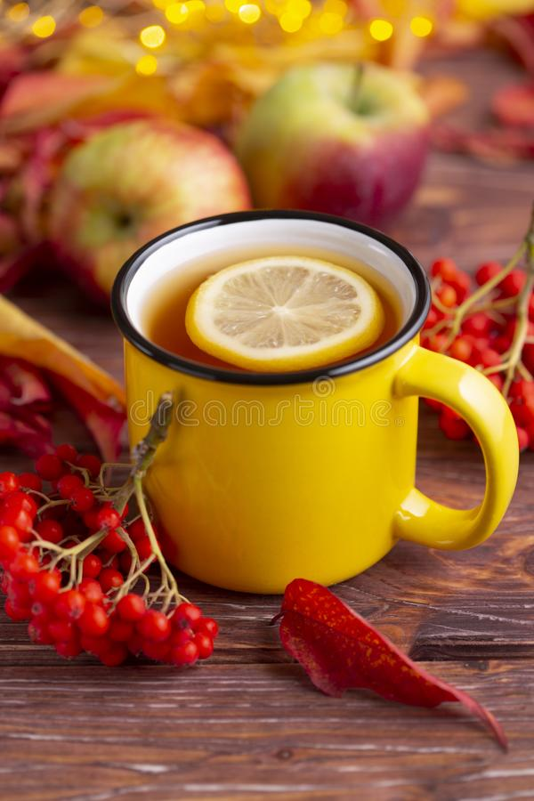 Yellow cup of tea with slice of lemon, colorful red and yellow autumn leaves, an apple  and bunch of rowanberry. royalty free stock photography