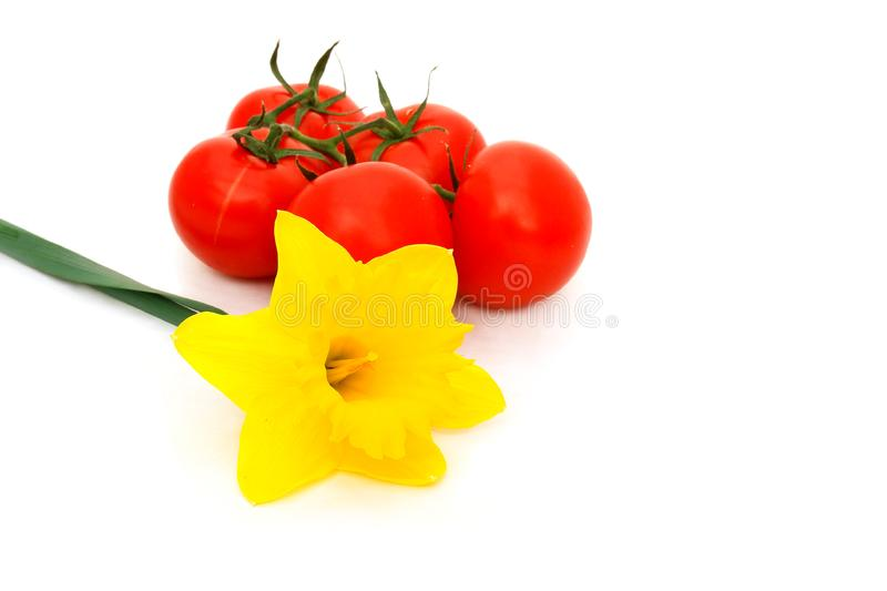 Yellow daffodil and tomatoes
