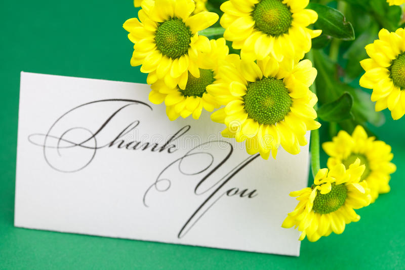 Yellow daisy and card signed thank you royalty free stock photos