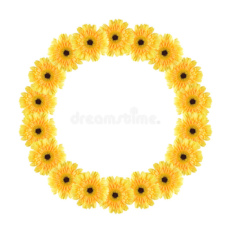 Download Yellow daisy circle frame stock image. Image of abstract - 20877461
