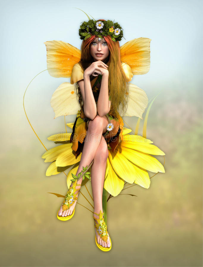 Download Yellow Daisy Fay Royalty Free Stock Image - Image: 24737366