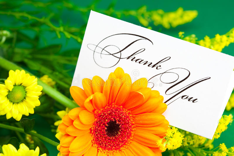 Yellow daisy, gerbera and card signed thank you royalty free stock photography