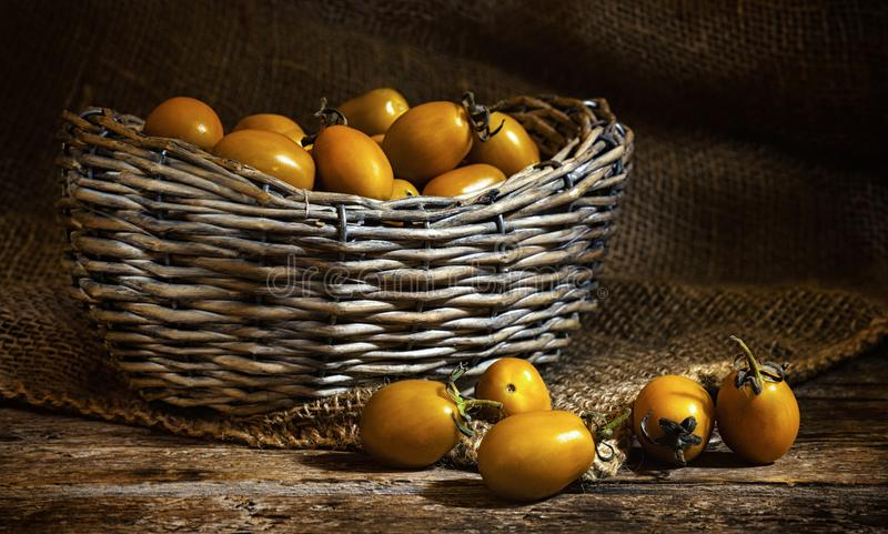 Yellow datterin cherry tomatoes. royalty free stock photography
