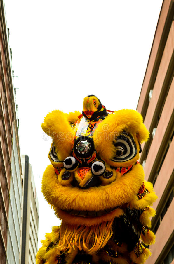 Yellow dragon dancing at chinese newyear stock photography