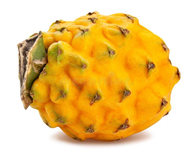 Yellow dragonfruit pitahaya. Path isolated on white stock photography