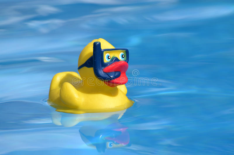 Download Yellow Duck Royalty Free Stock Image - Image: 26391646