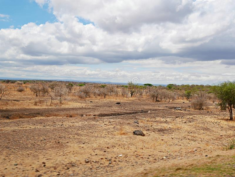 Yellow earth in Africa. Cloudy sky in Tanzania, Yellow earth in Africa, Africa, to meet adventures, safaris, Tarangiri, Ngorongoro,gray earth, the village of the stock photography