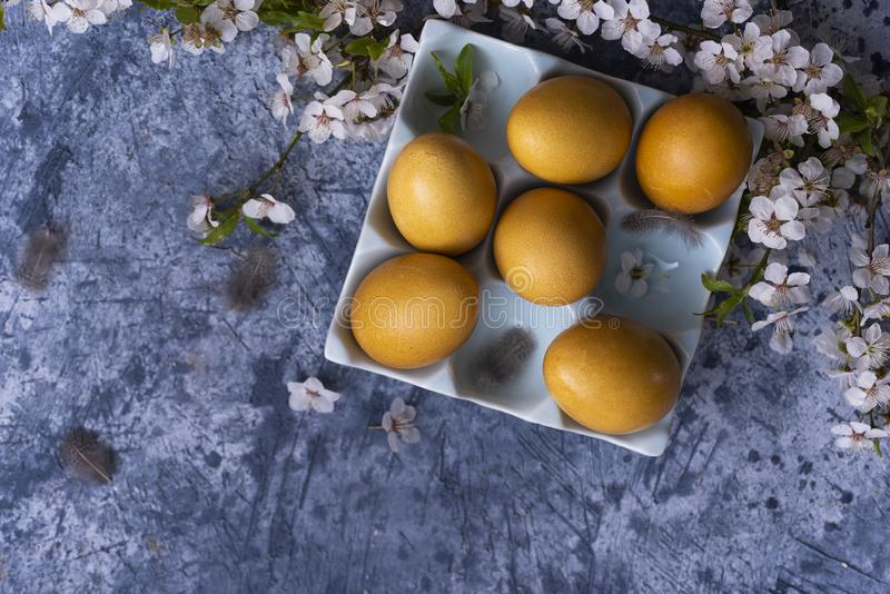 Yellow Easter eggs. With spring blossoms stock image