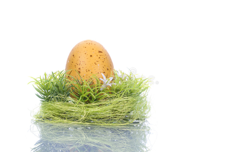 Yellow egg in green nest - easter concept stock photos