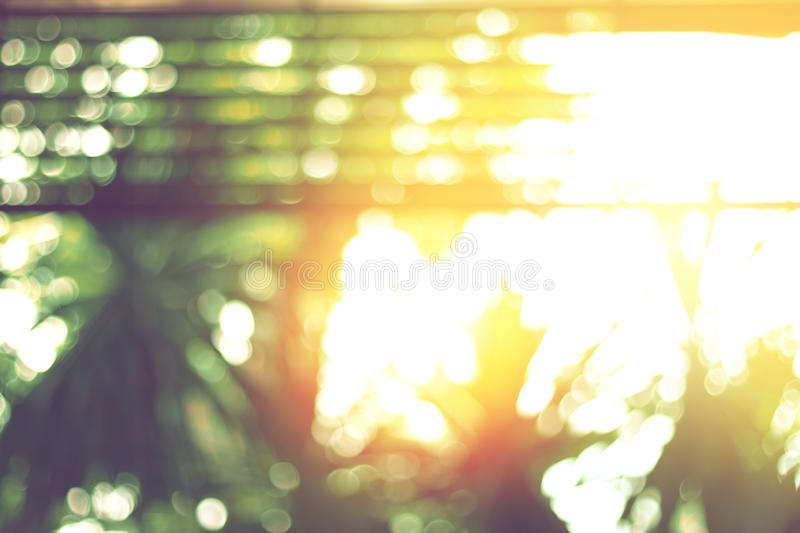 Yellow evening light and blurred green trees. When looking out at the porch stock image