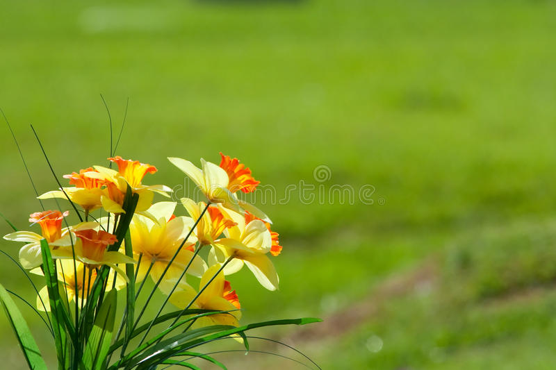 Yellow fake flowers royalty free stock image