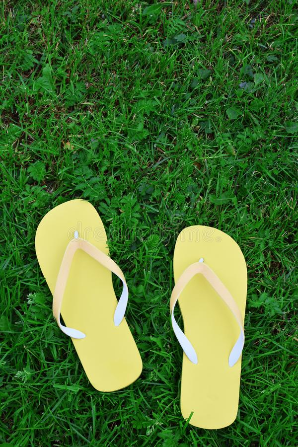 Yellow flip flops on green royalty free stock photography