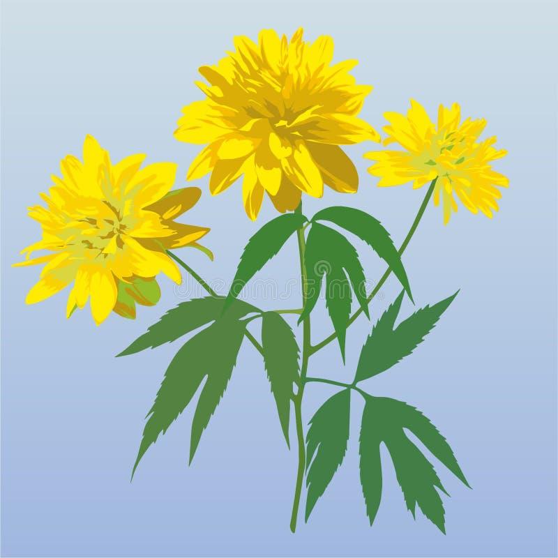 Yellow_flower 库存图片