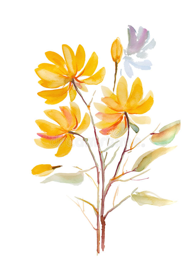 Yellow flowerhand drawn watercolor painting on white background w download yellow flowerhand drawn watercolor painting on white background w watercolor flower mightylinksfo