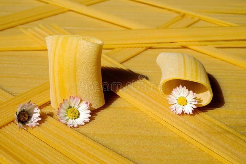 Yellow, Flower, Still Life Photography stock photos