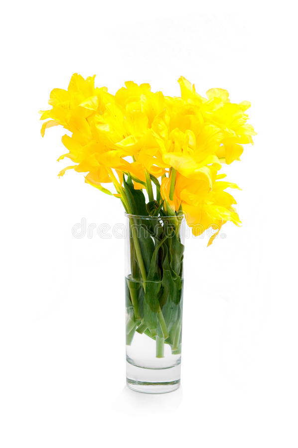 Download Yellow flowers stock photo. Image of celebration, bright - 23319094