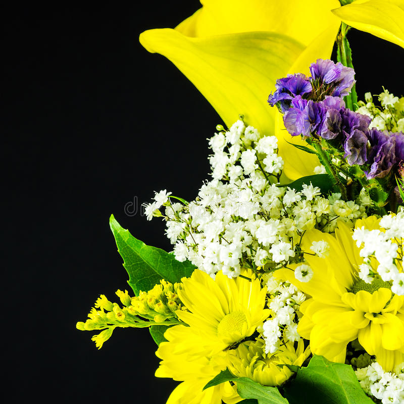 Yellow Flowers On Black Background Stock Photo - Image of