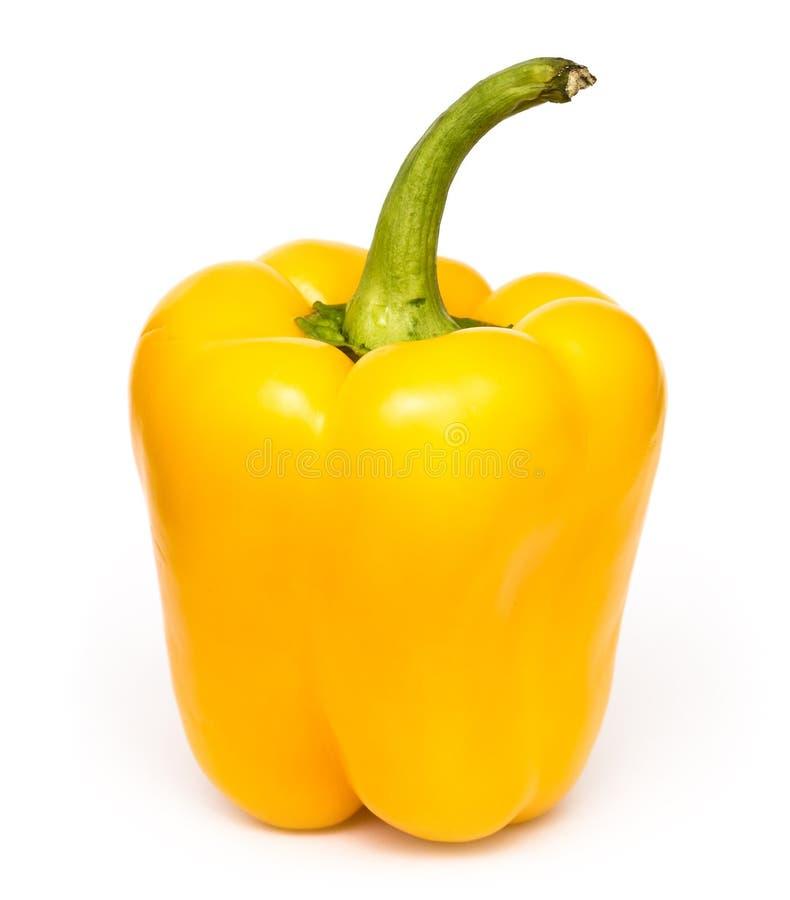 Yellow Fresh Capsicum royalty free stock photos