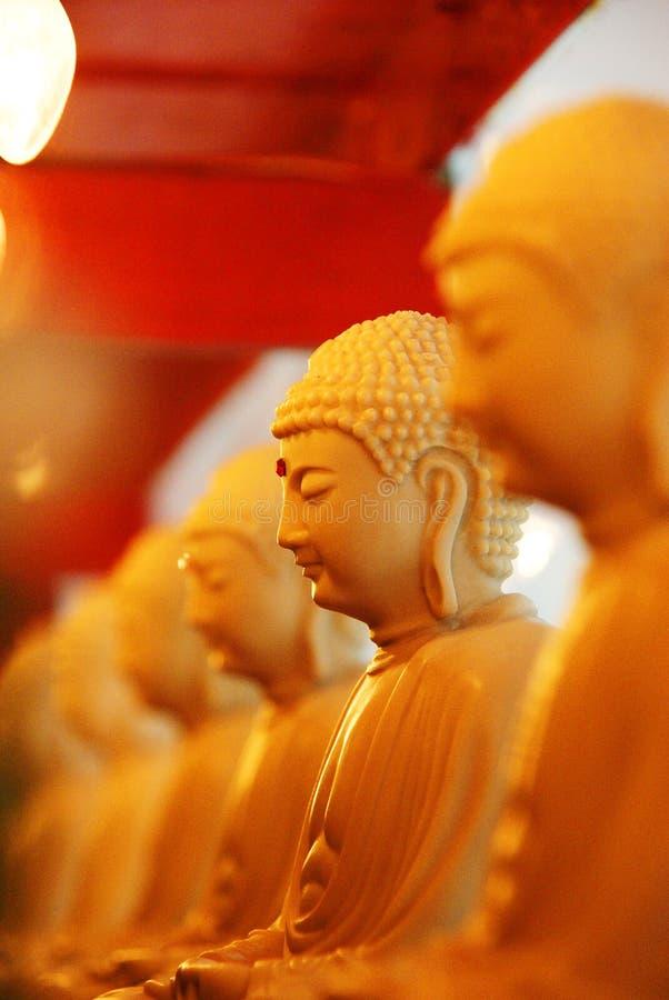 Yellow, Gautama Buddha, Orange, Close Up royalty free stock images