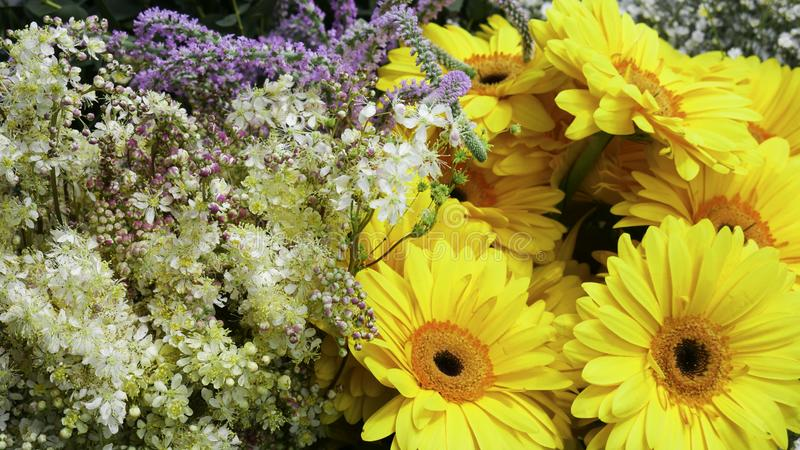 Yellow Gerber and small decorative flowers royalty free stock photography