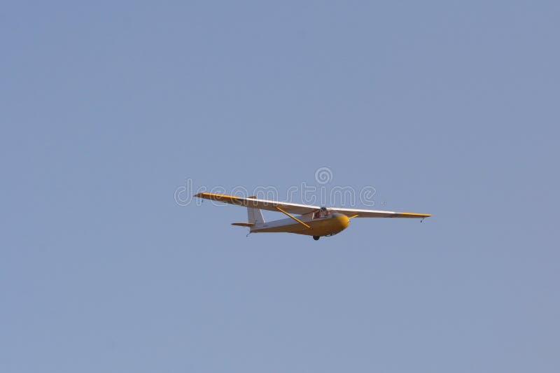 Yellow glider stock photo