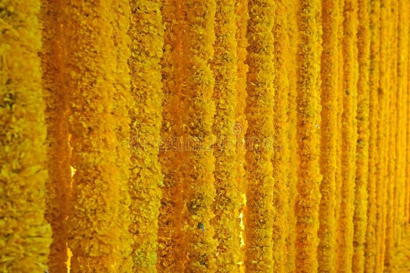 Yellow gold marigold garland background stock photos