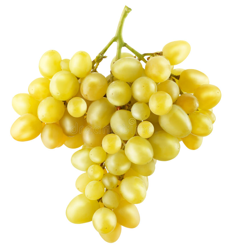 Yellow grapes isolated on a white background stock image