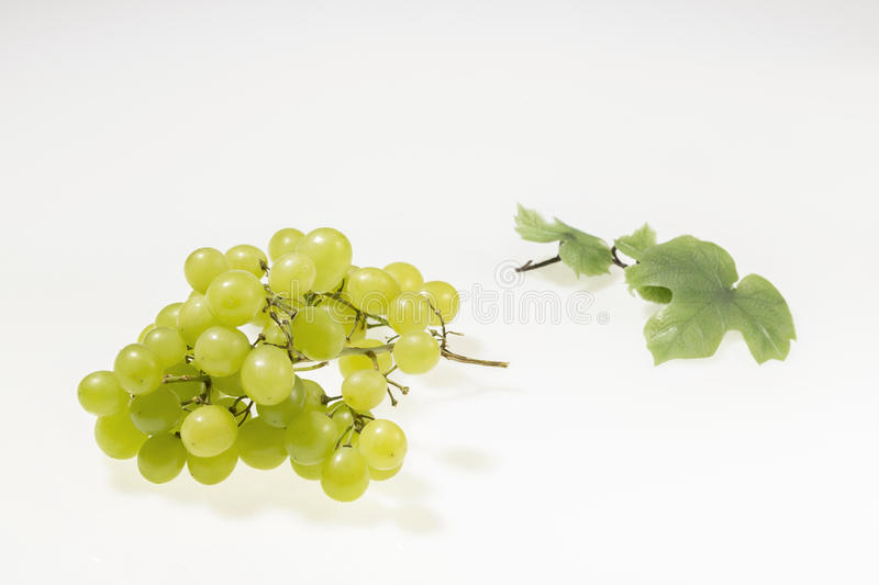 Yellow grapes on white background royalty free stock image