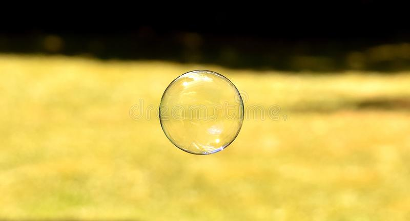 Yellow, Grass, Close Up, Atmosphere Free Public Domain Cc0 Image