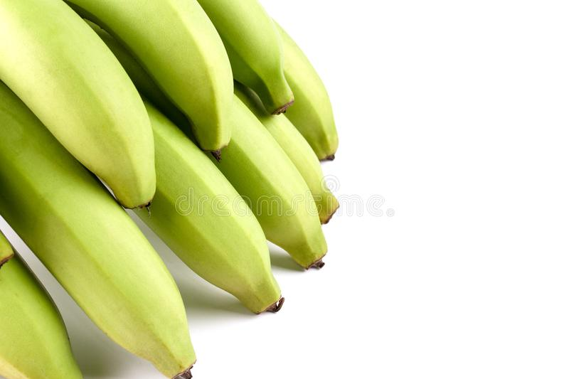Yellow Green Banana Comp. Close up Green Banana Comp on white background and have copy space stock photos