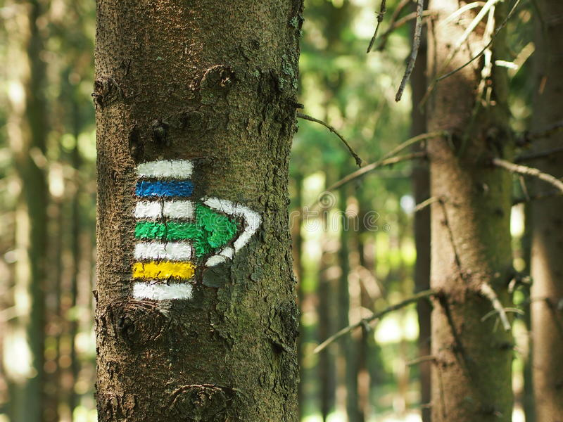 Yellow, green and blue tourist sign. Pointing to the right drawn on spruce trunk in the czech woods stock images