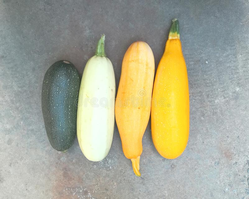 Yellow and green colored zucchini are on the pavement. Multicolored vegetables. New crop. Summer autumn. Freshly plucked zucchini. Diet food. Fresh, vitamins royalty free stock photography