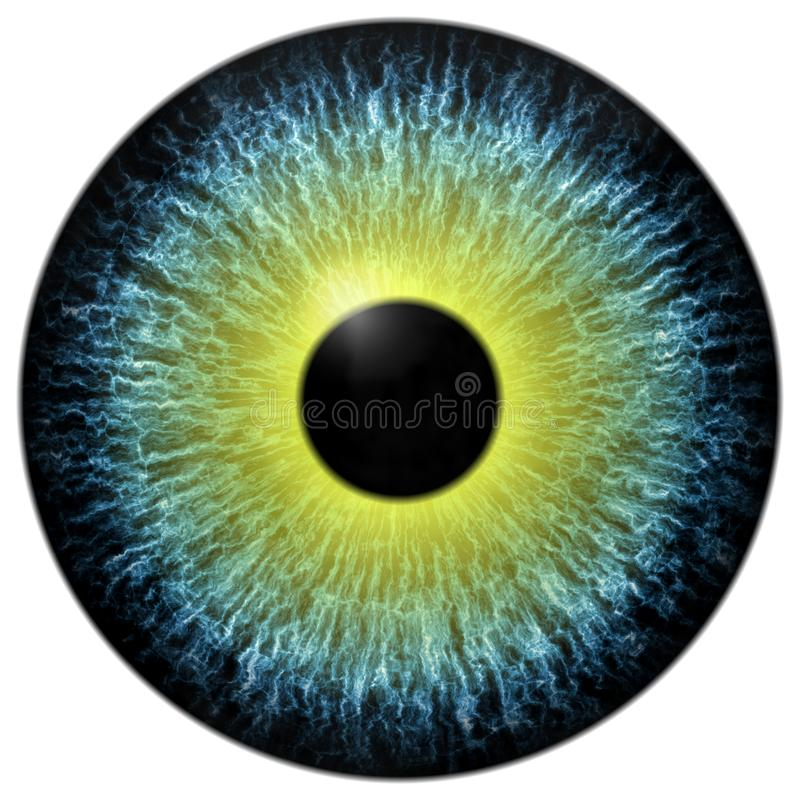 Yellow and green eyeball texture stock photo
