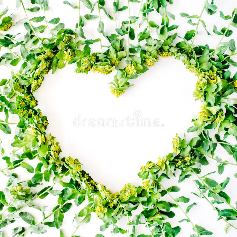 Yellow and green floral wreath frame heart with branches, leaves. Petals isolated on white background. flat lay, overhead view stock photo