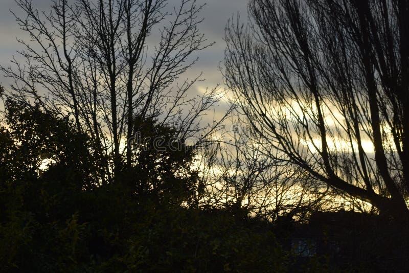 Near sunset time. Yellow and grey sky as sun nears setting royalty free stock photos