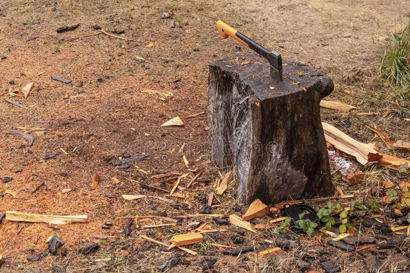 Yellow handled ax with blade stuck in a tree stump used to chop wood with wood chips scattered around on the ground royalty free stock images